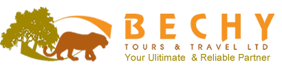 Bechy Tours & Travel Ltd